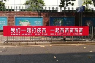 自带BGM!深圳这条标语走红!