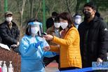 韩国防疫出新招 春季赏花须摇号