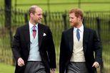 哈里王子首认与威廉不和:我们不同路