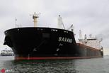巴西担心美制裁,致两艘伊朗运粮船被困