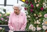 英女王官方寿辰阅兵 小王子频频抢镜