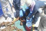 奇幻漂流:印尼少年海上漂流49天获救