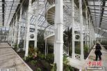 世界最大玻璃温室翻修后重新开放