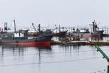 80多名朝鲜公民因非法捕捞被俄方扣留