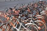"""集体涨价 共享单车迎来""""收割期""""?"""