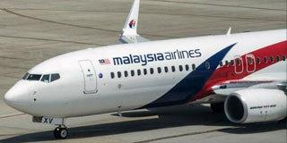 英专家称发现MH370:在柬埔寨密林