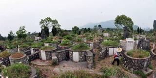 6万座坟!5A景区成非法坟墓集中地