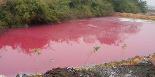 沧州开发区现红色污水 环保部门立案调查