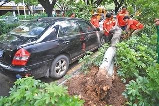 """""""白鹿""""余威持续 三省份局地大暴雨"""