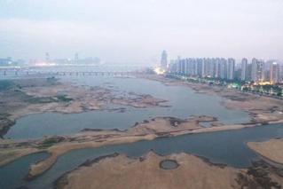中国气象局:今年旱情近40年来较严重
