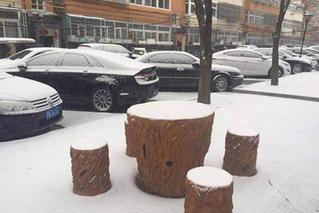 等了一个冬天 北京城区里终于见到雪花了