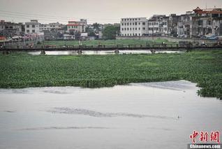 督察组:汕头对练江污染视而不见