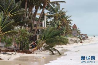 世界气象日:关注气候变化 保护海洋