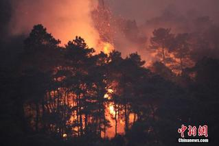 复燃!广东佛山森林大火又现明火