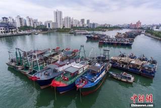 """海南:受台风""""康森""""影响 渔船回港避风"""