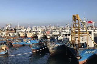 獐子岛变迁:消失的扇贝与离开的岛民