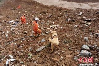 贵州山体滑坡已搜救出遇难人员38人