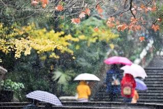 寒潮已上线,泰半其中国都得热到来岁