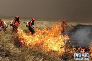 呼伦贝尔边境多地再次遭受入境火侵袭