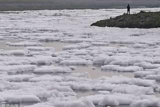 印度恒河支流污染严重 像积雪覆盖