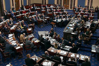 美参院投票通过特朗普弹劾案审判规则