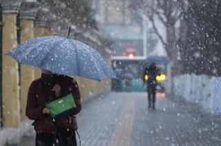 清明时节雪纷纷 哈尔滨大雪似硬币