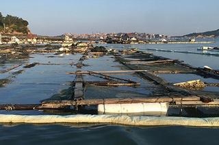 泉港碳九泄漏事件:这一周发生了什么
