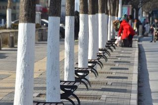 陕西一街道300多米装了54个椅子
